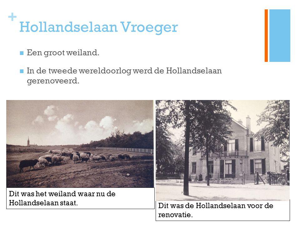 Hollandselaan Vroeger