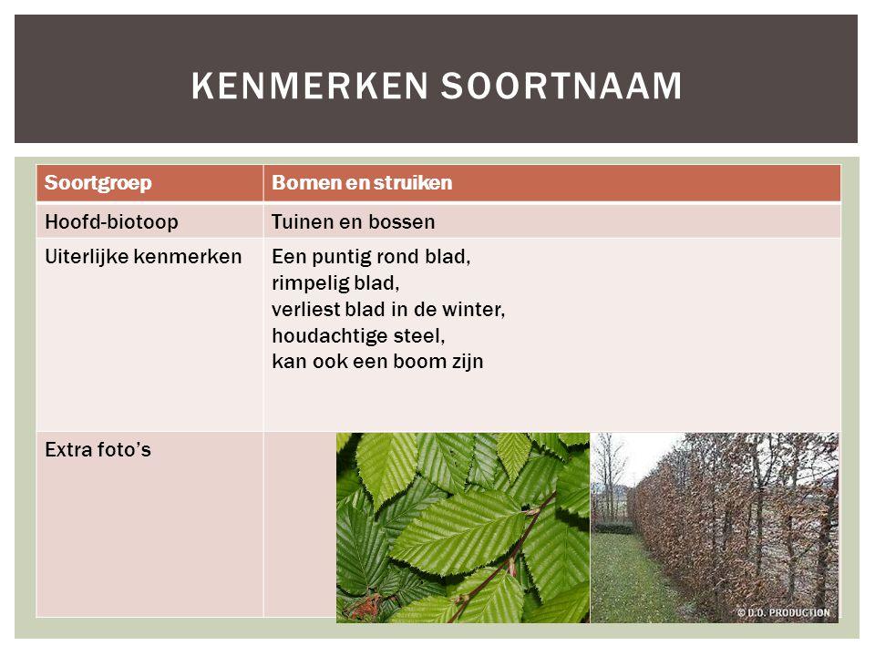 Kenmerken soortnaam Soortgroep Bomen en struiken Hoofd-biotoop