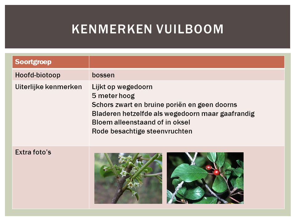 Kenmerken vuilboom Soortgroep Hoofd-biotoop bossen