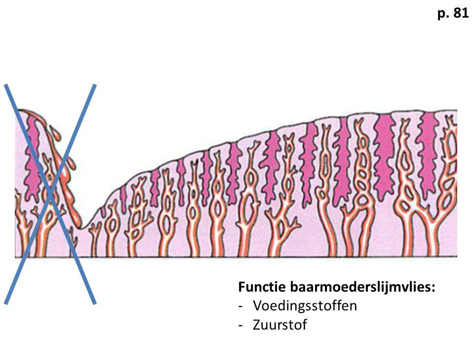 p. 81 Functie baarmoederslijmvlies: Voedingsstoffen Zuurstof