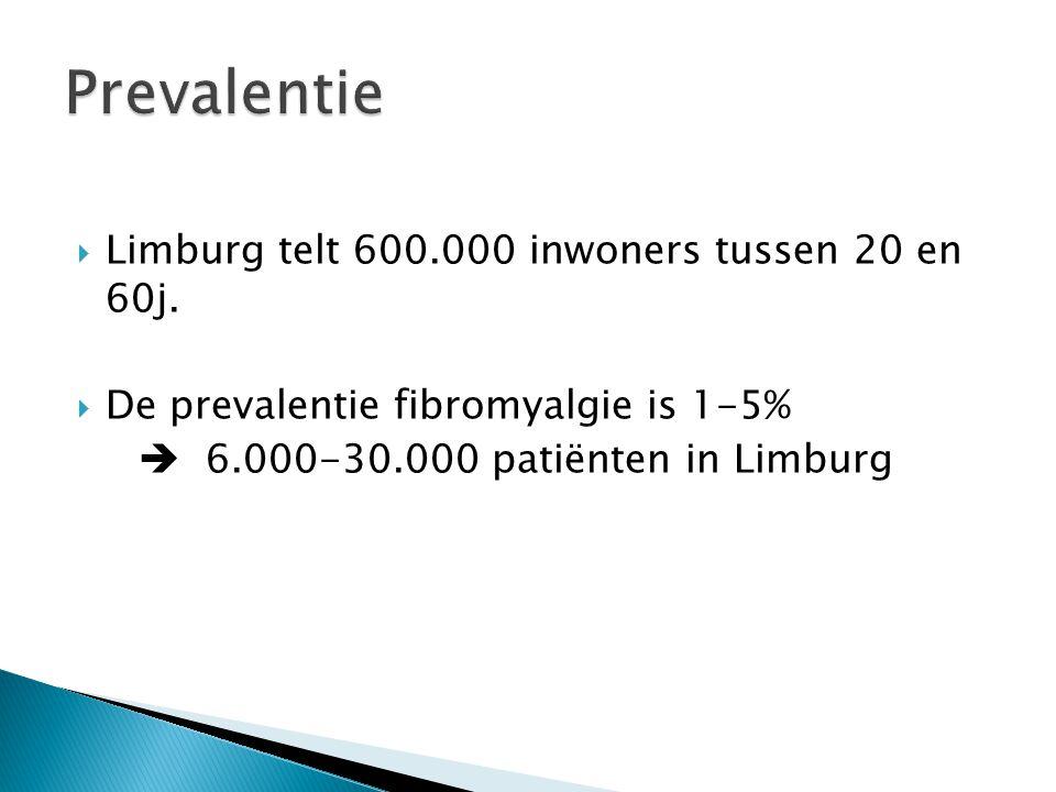 Prevalentie Limburg telt 600.000 inwoners tussen 20 en 60j.