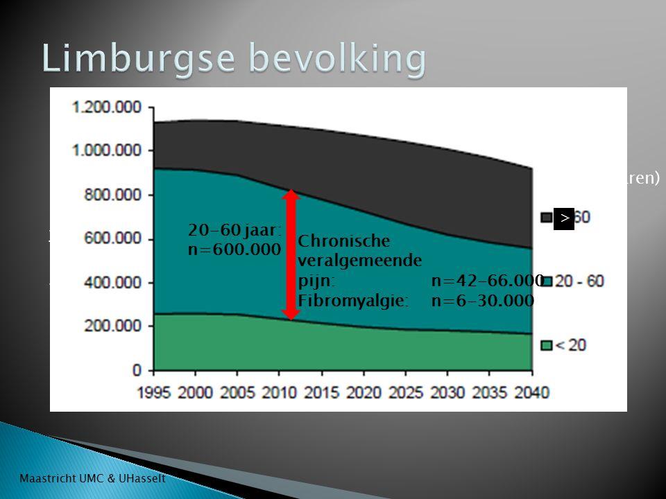 Limburgse bevolking Leeftijd (jaren) Aantal inwoners 20-60 jaar:
