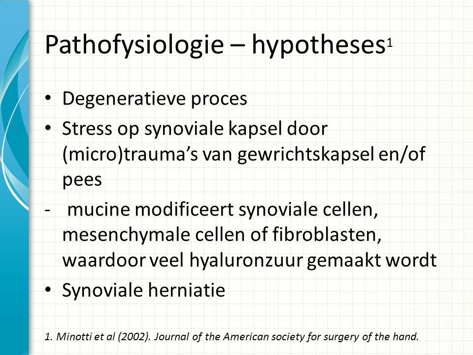 Pathofysiologie – hypotheses1