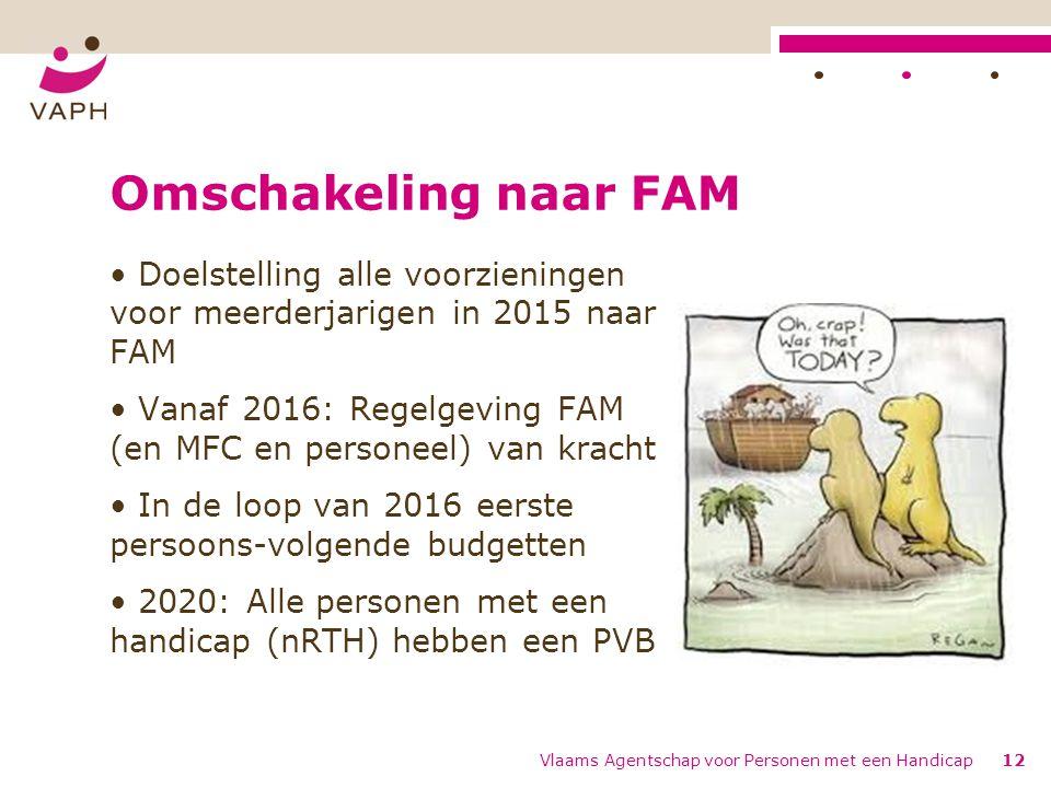 Omschakeling naar FAM Doelstelling alle voorzieningen voor meerderjarigen in 2015 naar FAM.
