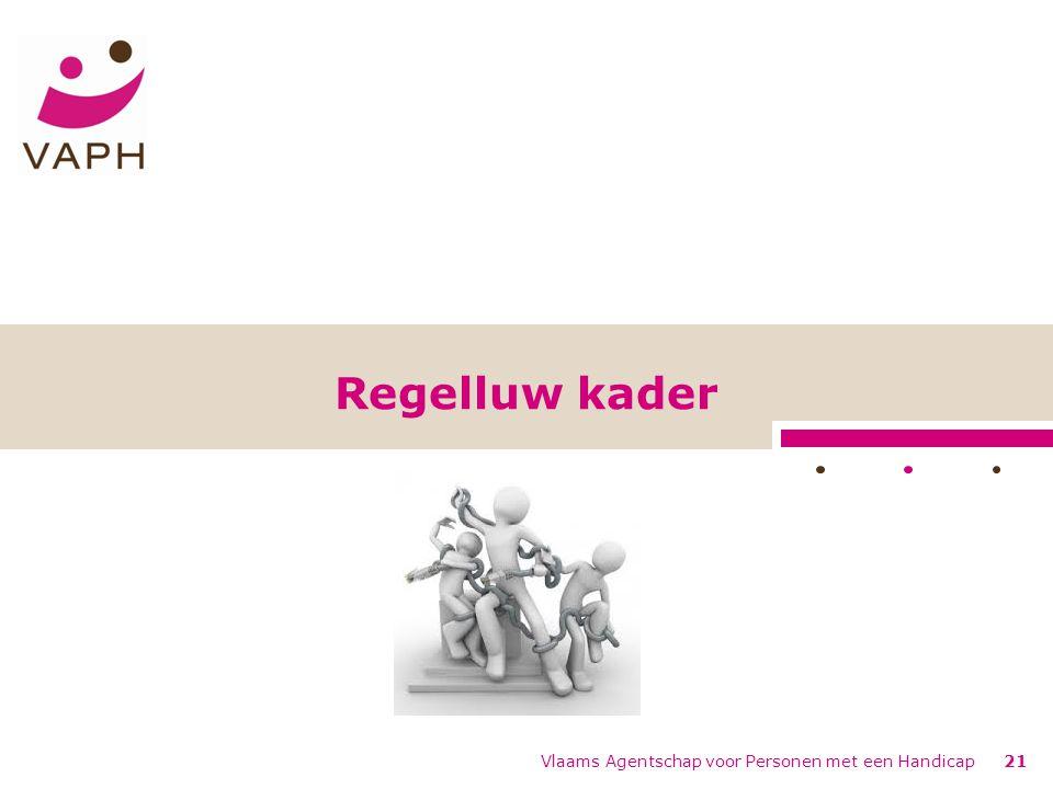 Regelluw kader Vlaams Agentschap voor Personen met een Handicap