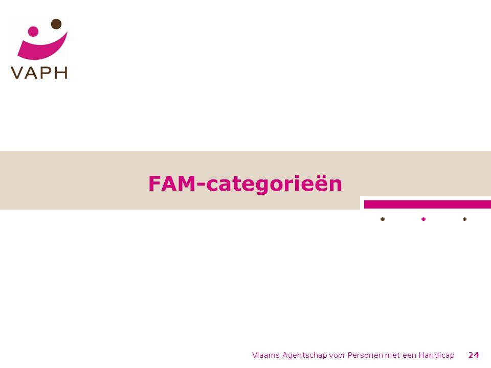 FAM-categorieën Vlaams Agentschap voor Personen met een Handicap