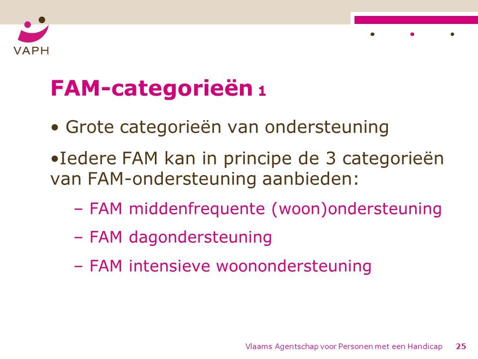 FAM-categorieën 1 Grote categorieën van ondersteuning