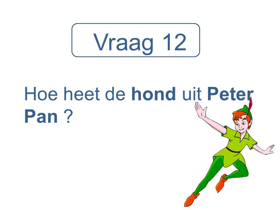 Hoe heet de hond uit Peter Pan