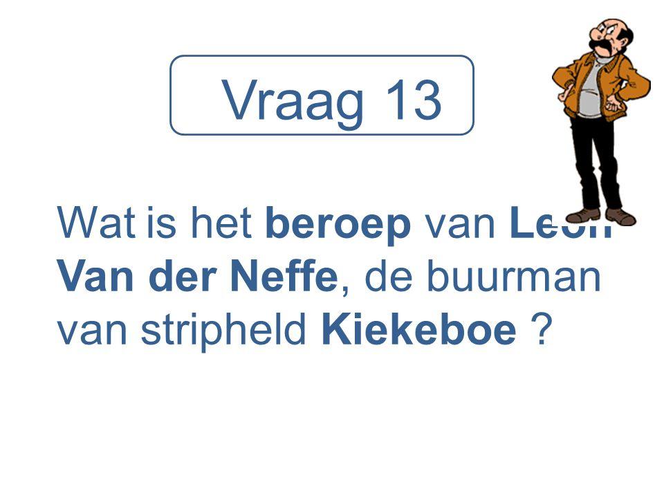 Vraag 13 Wat is het beroep van Leon Van der Neffe, de buurman van stripheld Kiekeboe