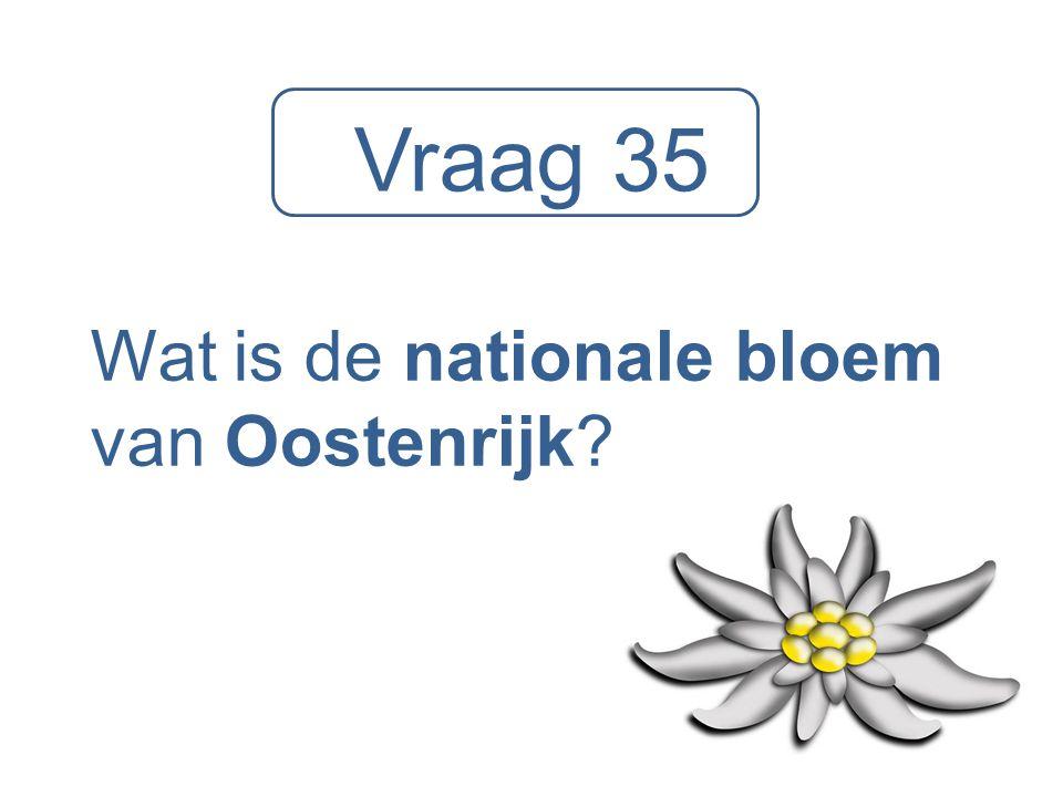 Wat is de nationale bloem van Oostenrijk