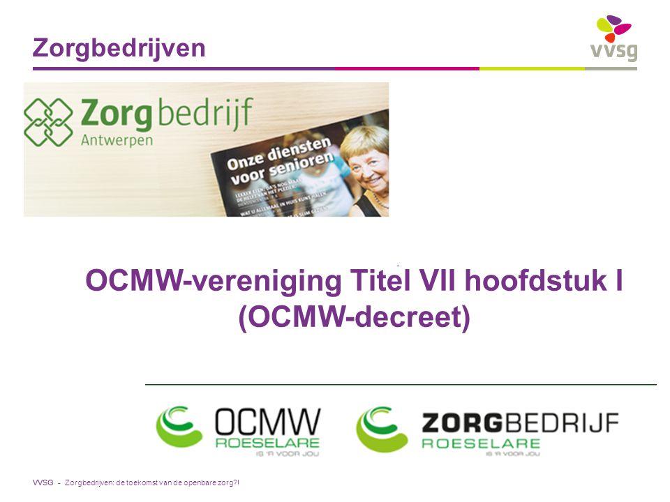 OCMW-vereniging Titel VII hoofdstuk I (OCMW-decreet)