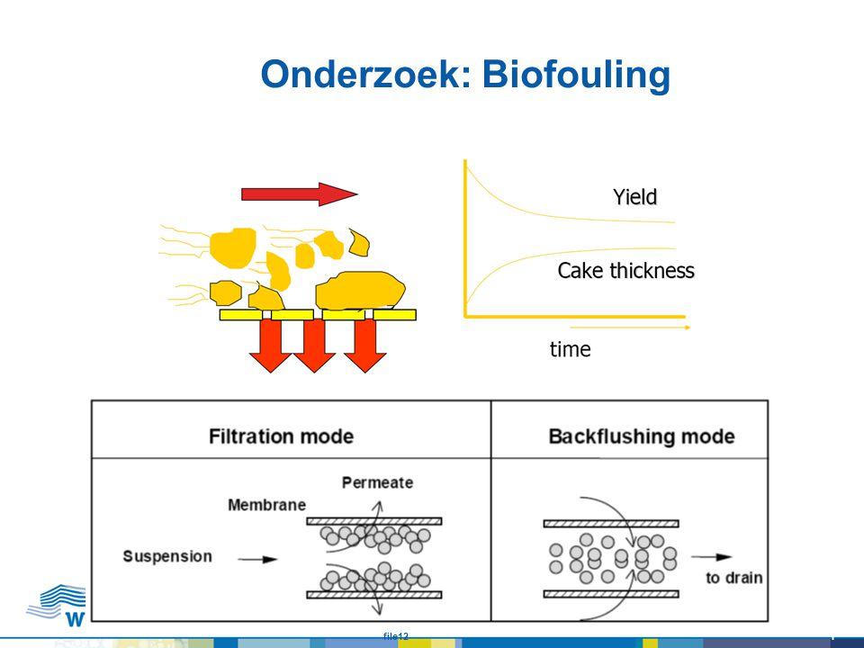 Onderzoek: Biofouling