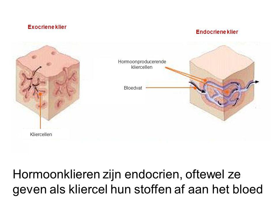 Hormoonklieren zijn endocrien, oftewel ze
