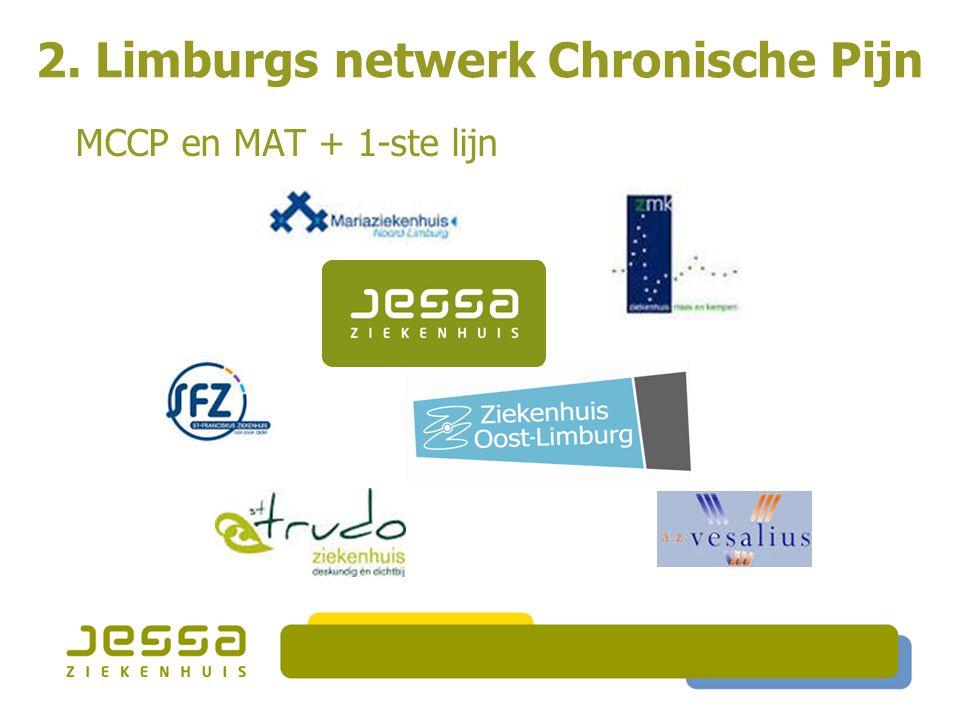 2. Limburgs netwerk Chronische Pijn