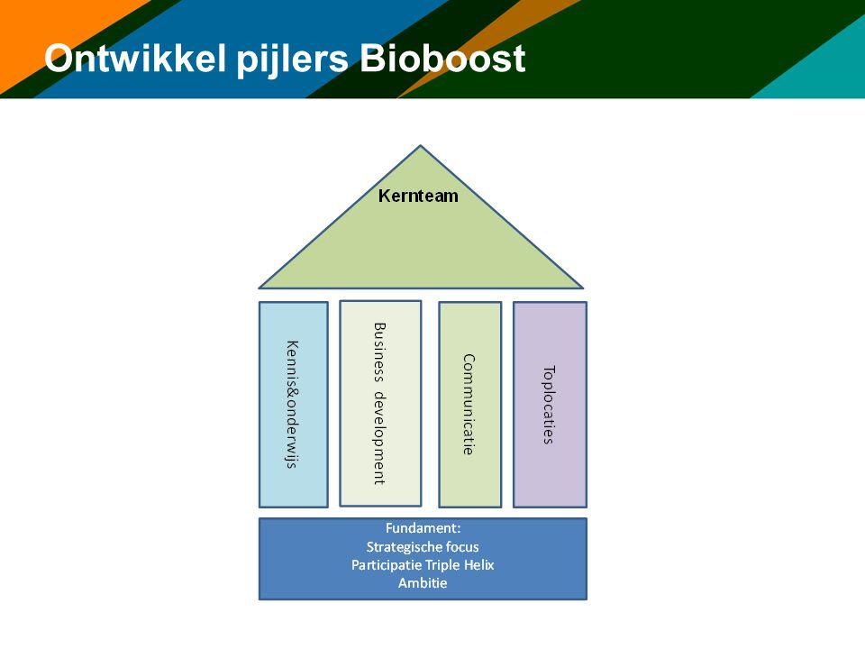 Ontwikkel pijlers Bioboost
