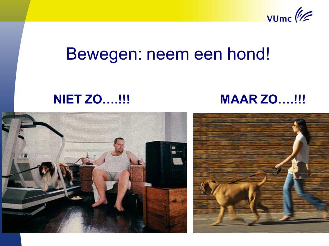 Bewegen: neem een hond! NIET ZO….!!! MAAR ZO….!!!