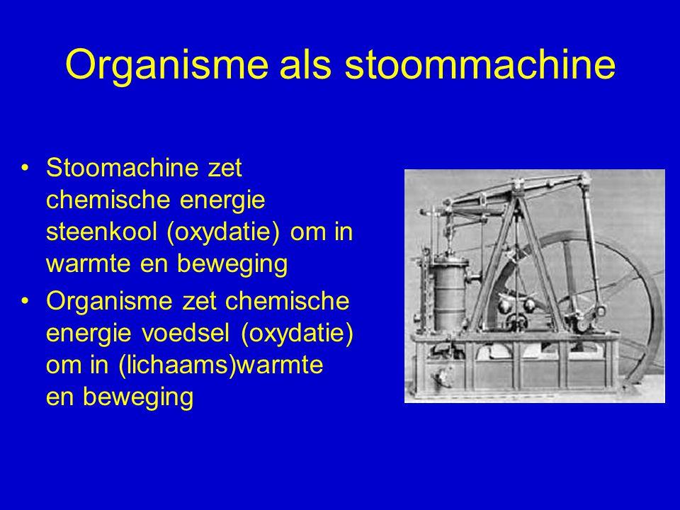 Organisme als stoommachine