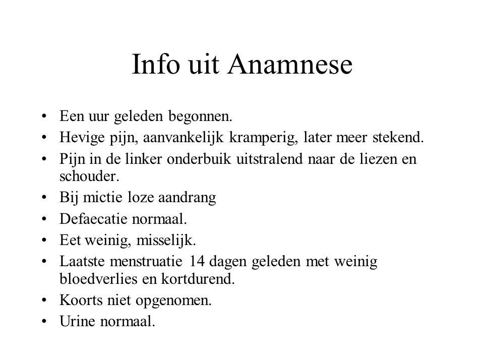 Info uit Anamnese Een uur geleden begonnen.