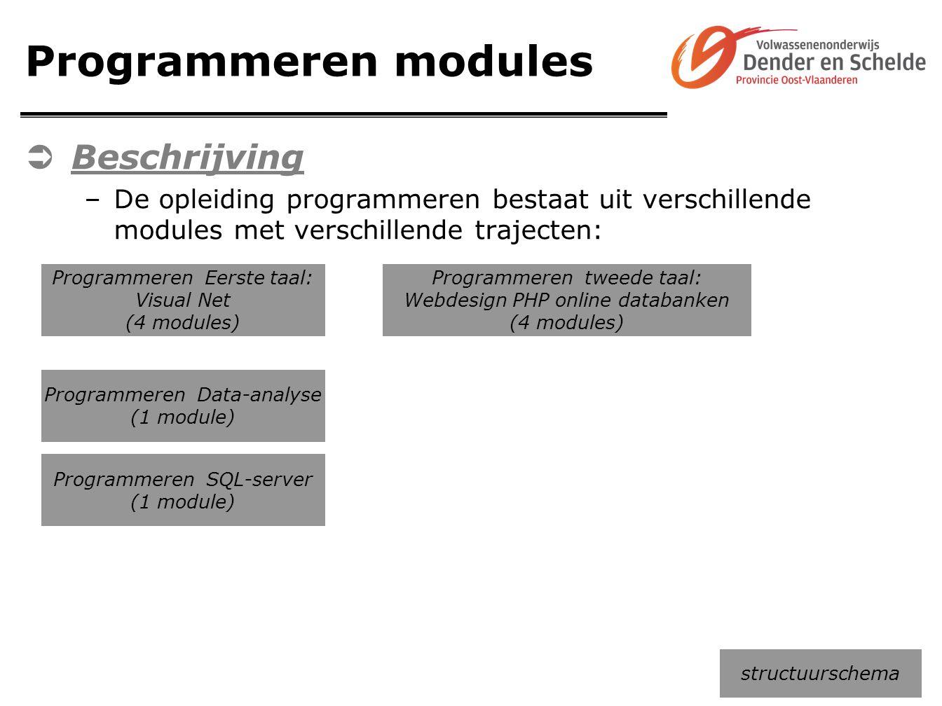 Programmeren modules Beschrijving