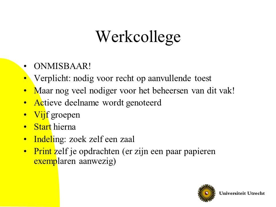 Werkcollege ONMISBAAR!