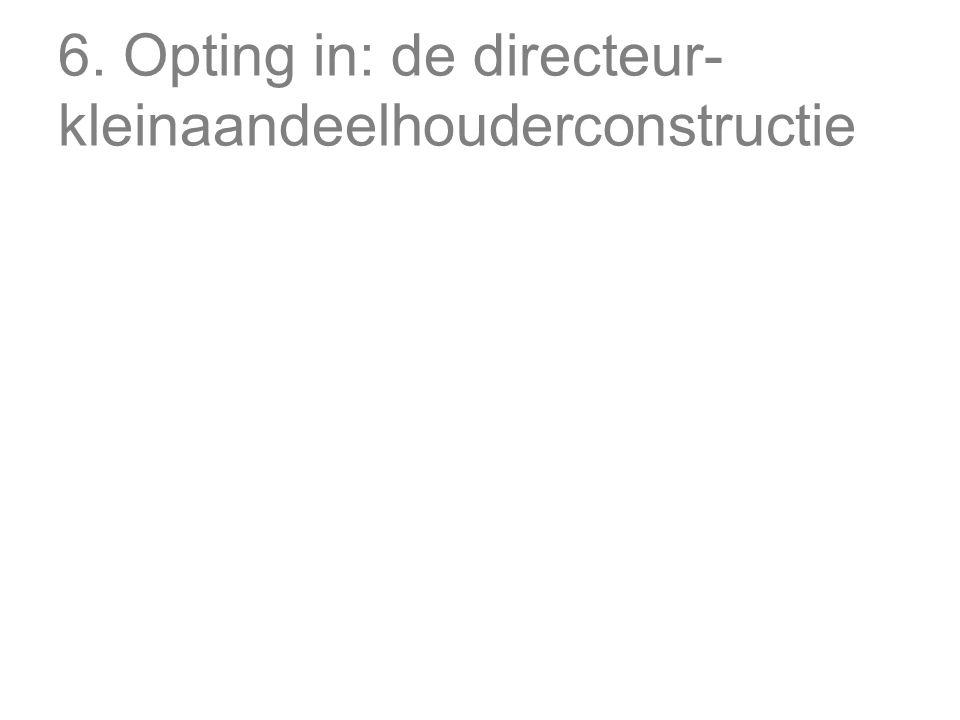 6. Opting in: de directeur-kleinaandeelhouderconstructie