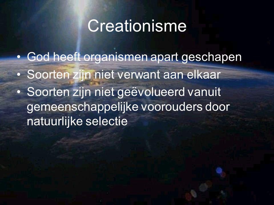 Creationisme God heeft organismen apart geschapen