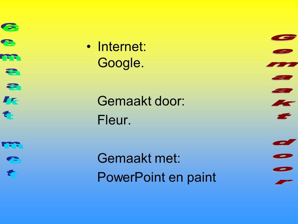 Gemaakt met Gemaakt door Internet: Google. Gemaakt door: Fleur.