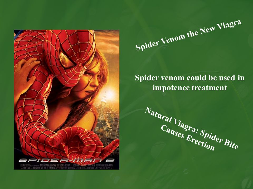 Spider Venom the New Viagra