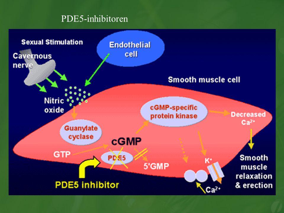 PDE5-inhibitoren