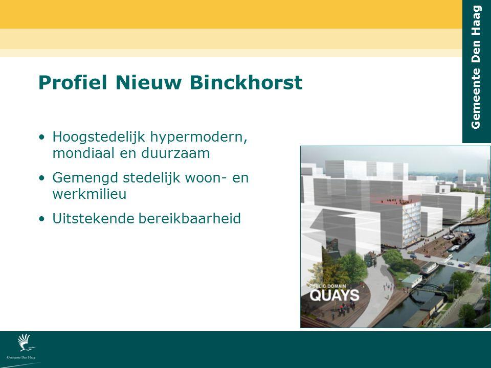 Profiel Nieuw Binckhorst
