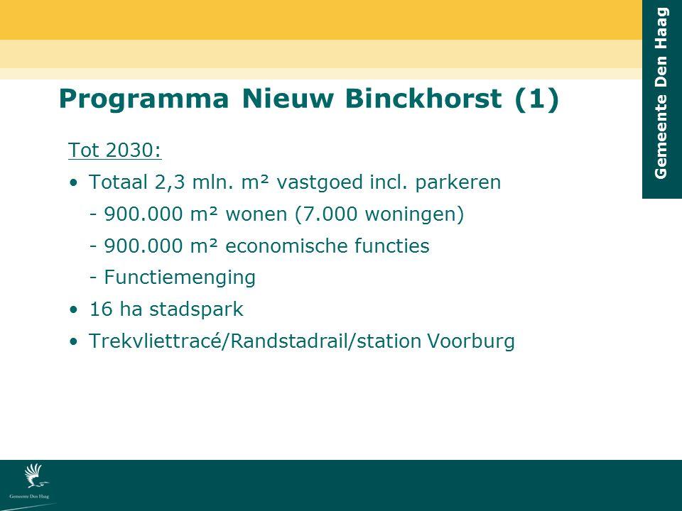 Programma Nieuw Binckhorst (1)