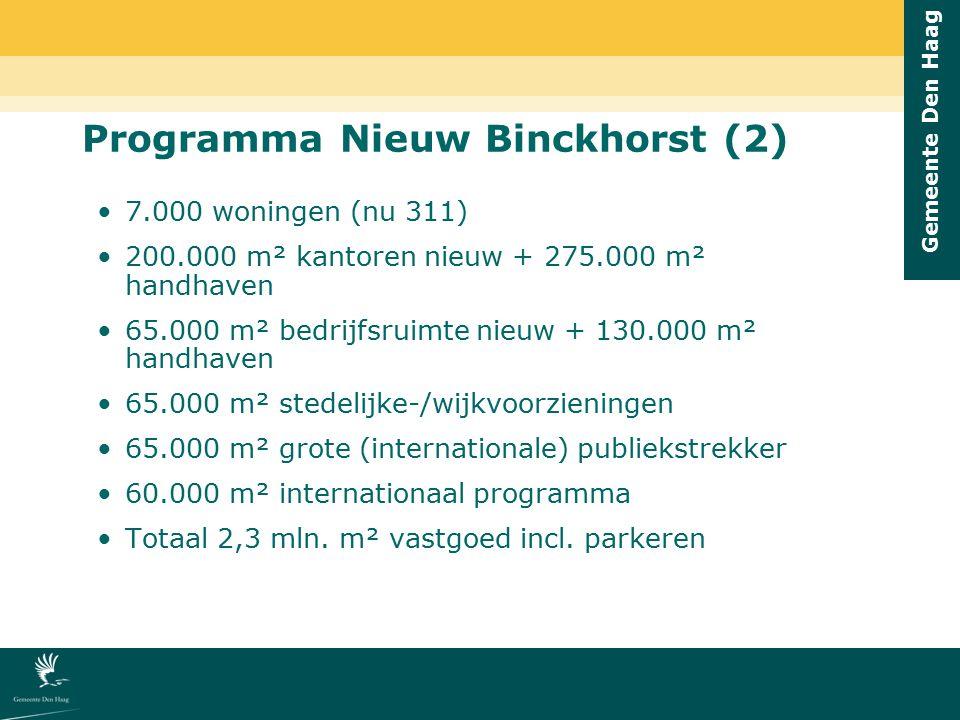 Programma Nieuw Binckhorst (2)