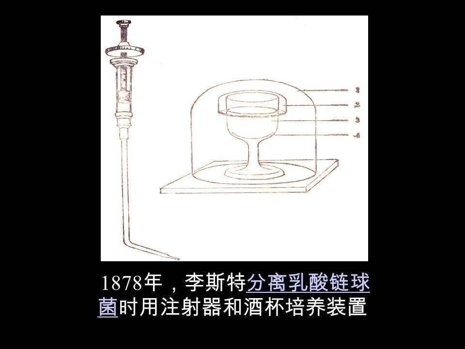 1878年,李斯特分离乳酸链球 菌时用注射器和酒杯培养装置