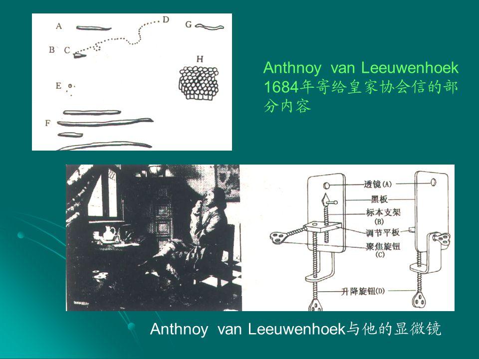 Anthnoy van Leeuwenhoek