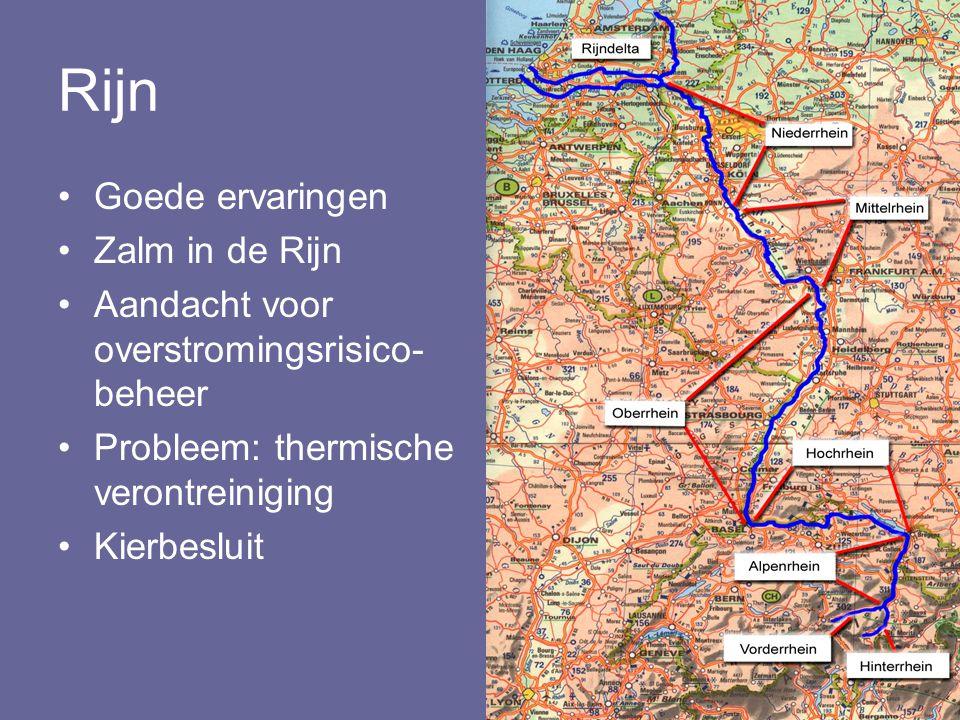 Rijn Goede ervaringen Zalm in de Rijn
