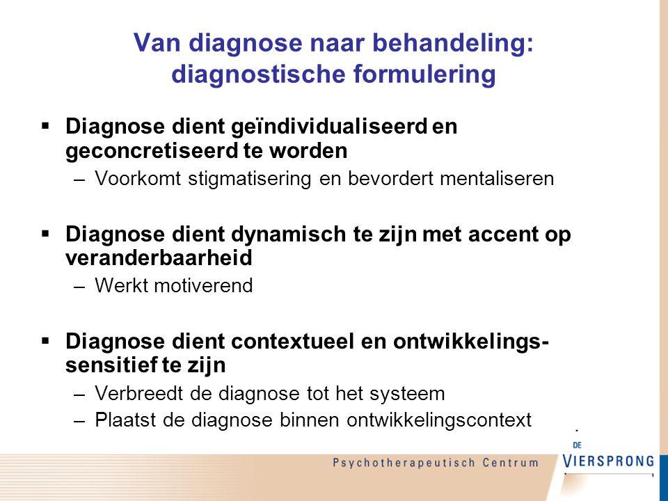 Van diagnose naar behandeling: diagnostische formulering