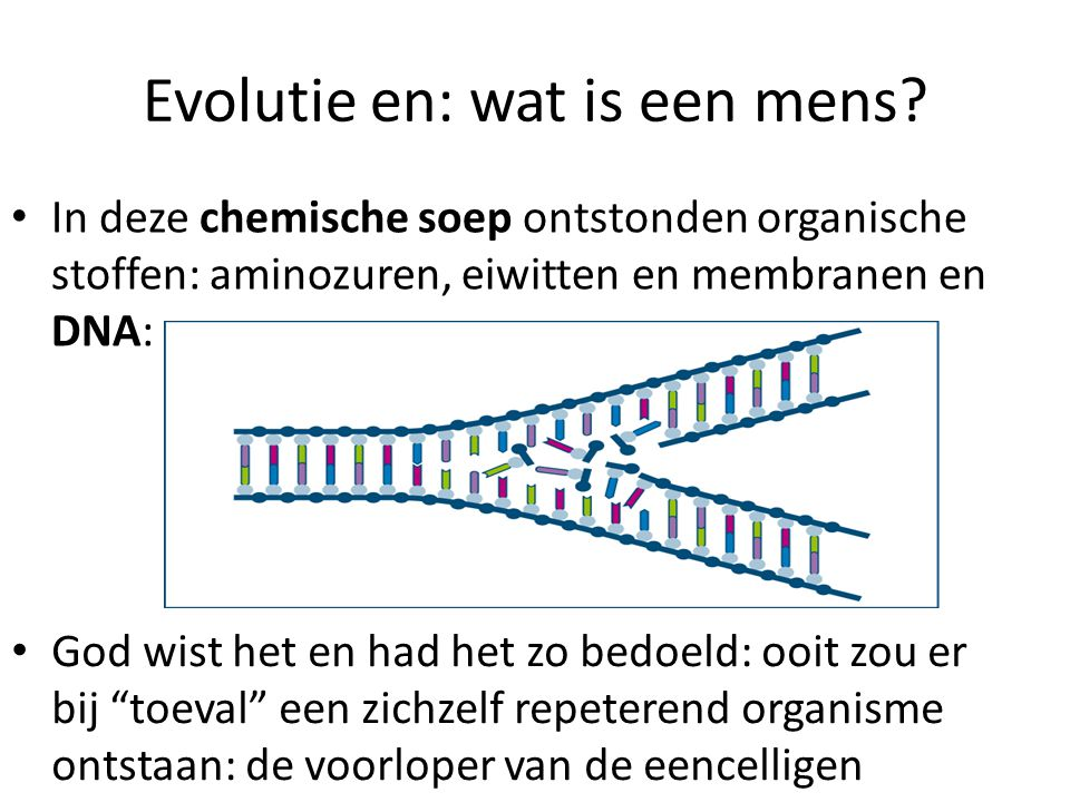 Evolutie en: wat is een mens