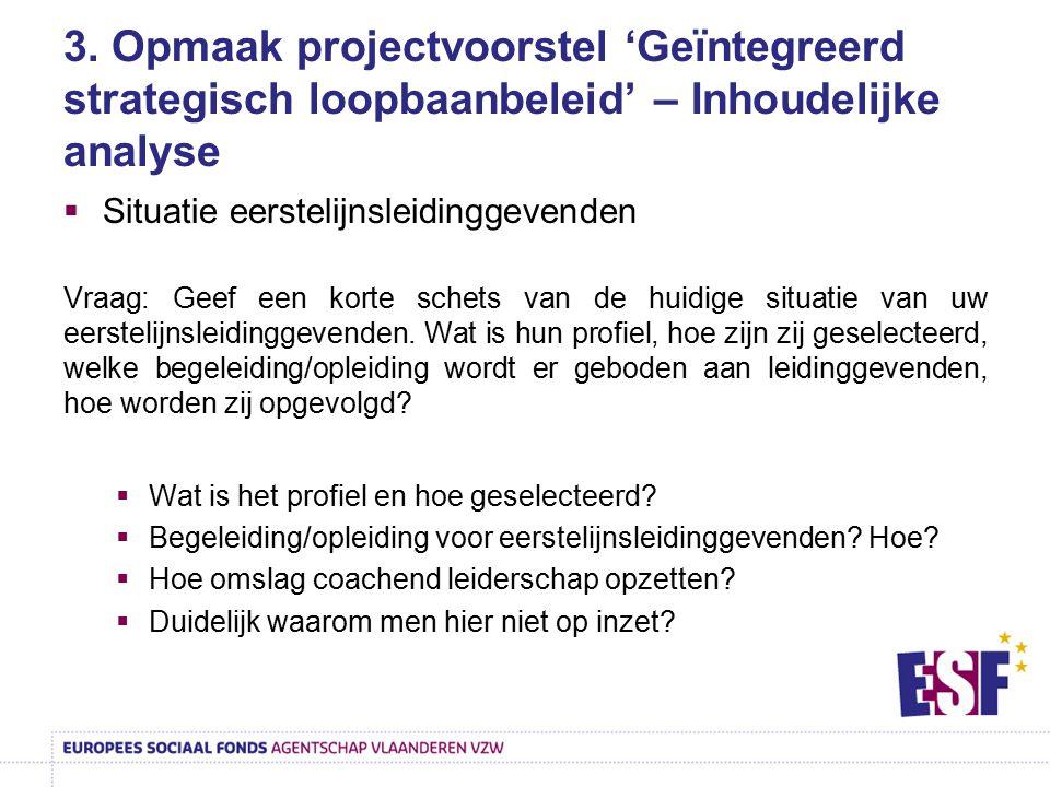 3. Opmaak projectvoorstel 'Geïntegreerd strategisch loopbaanbeleid' – Inhoudelijke analyse