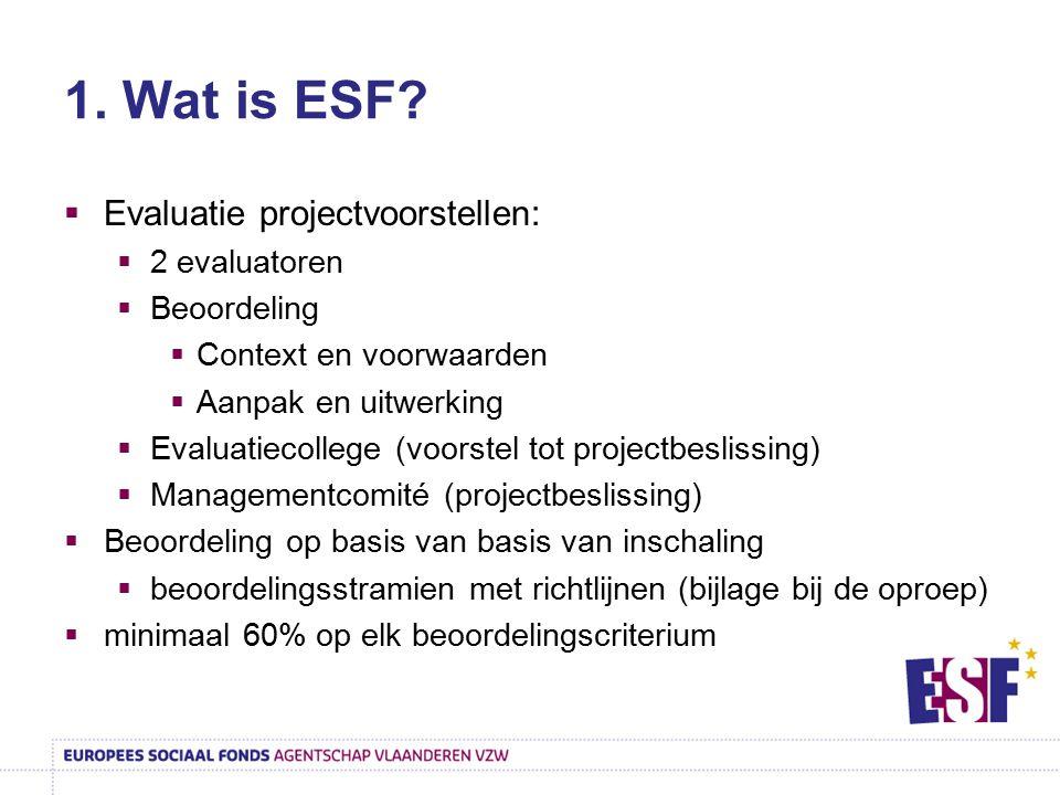 1. Wat is ESF Evaluatie projectvoorstellen: 2 evaluatoren Beoordeling
