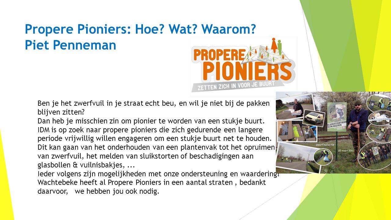 Propere Pioniers: Hoe Wat Waarom Piet Penneman