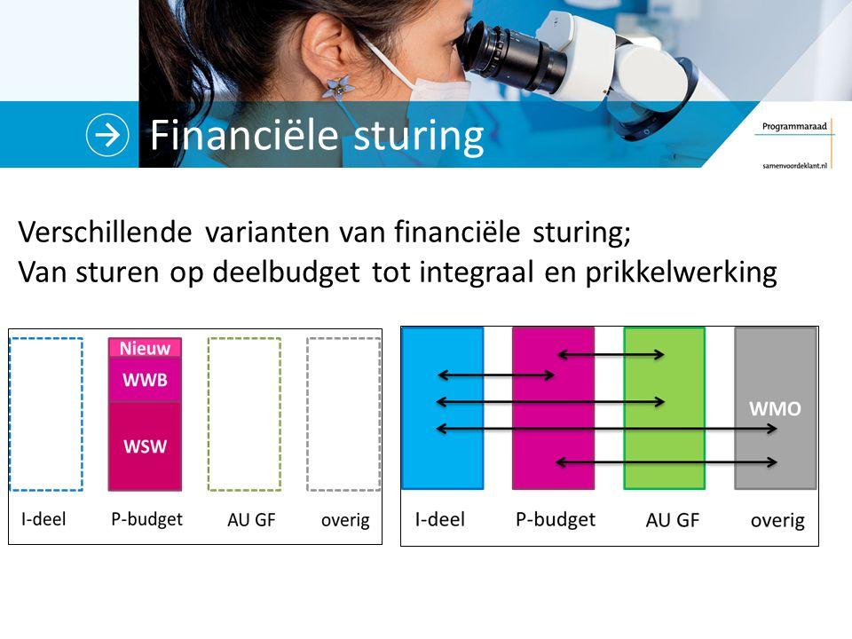 Financiële sturing Verschillende varianten van financiële sturing;