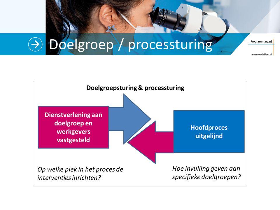 Doelgroep / processturing