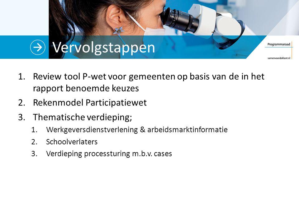 Vervolgstappen Review tool P-wet voor gemeenten op basis van de in het rapport benoemde keuzes. Rekenmodel Participatiewet.