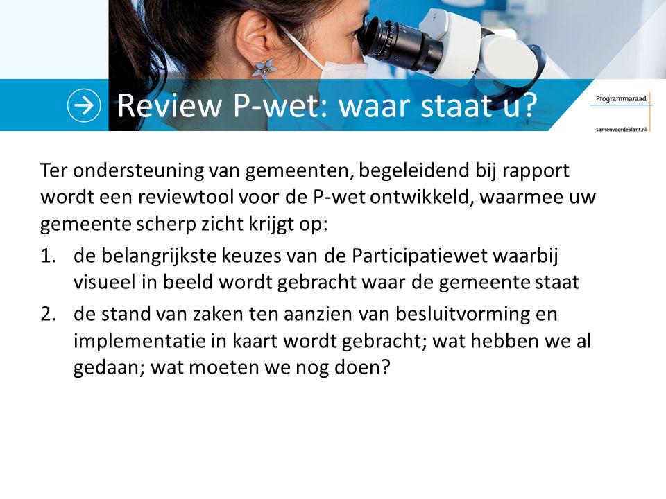 Review P-wet: waar staat u