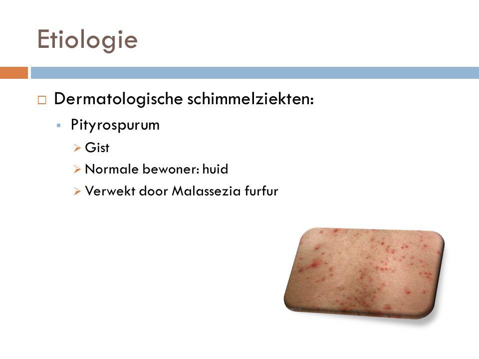 Etiologie Dermatologische schimmelziekten: Pityrospurum Gist