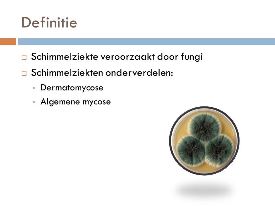 Definitie Schimmelziekte veroorzaakt door fungi