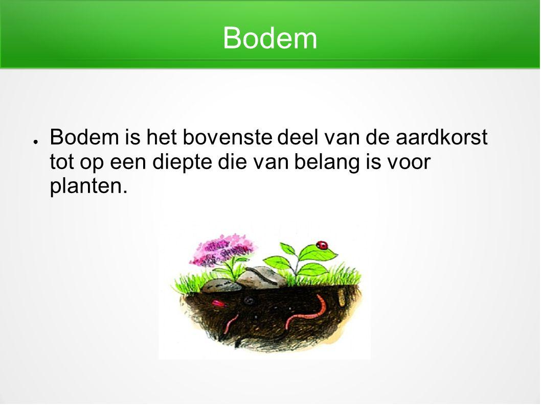 Bodem Bodem is het bovenste deel van de aardkorst tot op een diepte die van belang is voor planten.