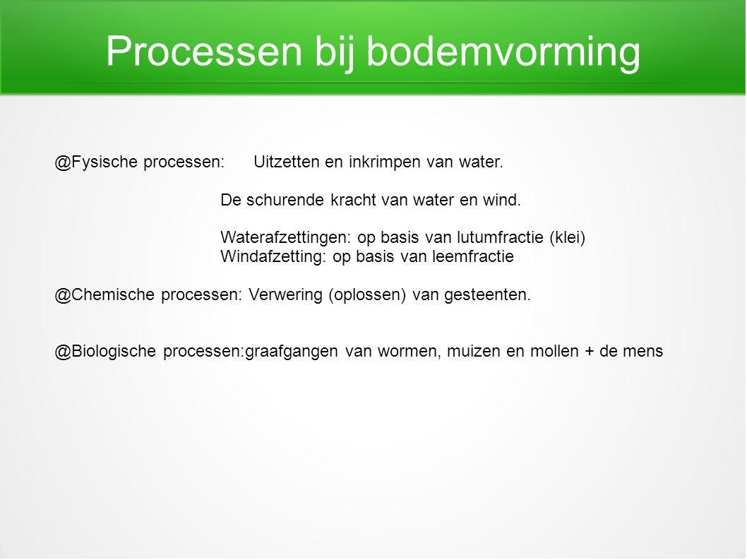 Processen bij bodemvorming