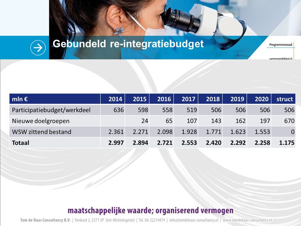 Gebundeld re-integratiebudget