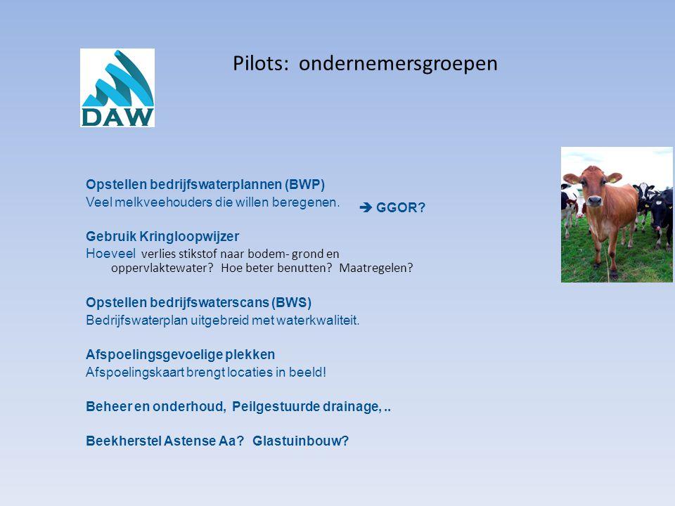 Pilots: ondernemersgroepen